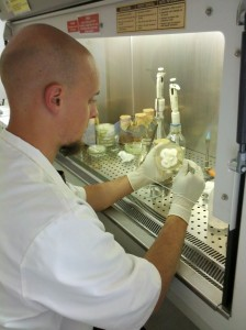 Our trainee Unai during his work in Lesny Bank Genow